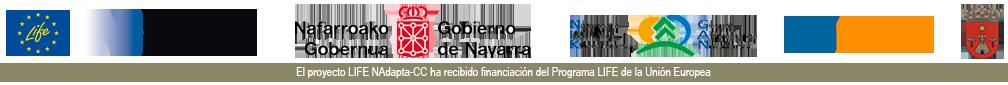 RIADA FALCES Logo